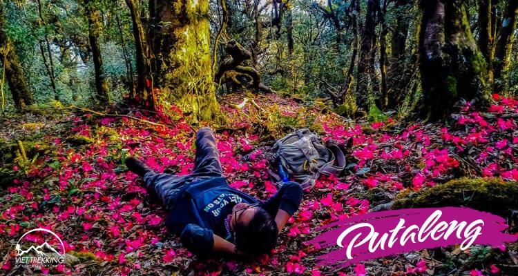 Khám phá Putaleng mùa núi nở hoa