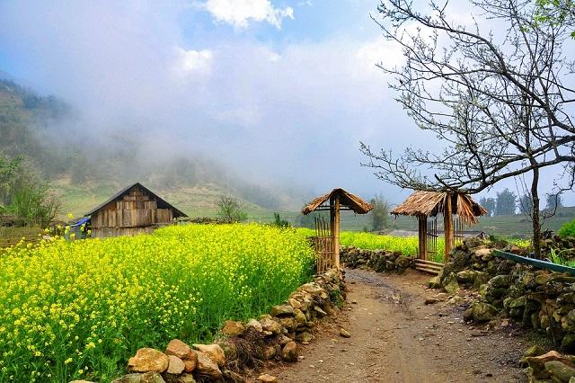 du lịch Sapa mùa xuân